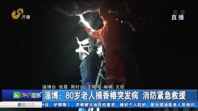 淄博:80岁老人摘香椿突发病 消防紧急救援