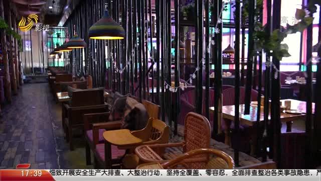 20210424《你消费我买单之食话食说》:威海九龙城的逛吃攻略(下)