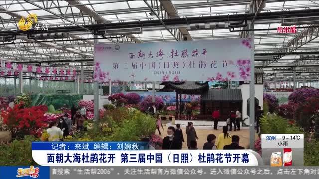 面朝大海杜鹃花开 第三届中国(日照)杜鹃花节开幕