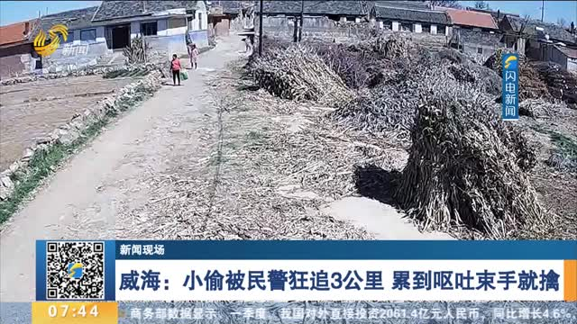【新聞現場】威海:小偷被民警狂追3公里 累到嘔吐束手就擒