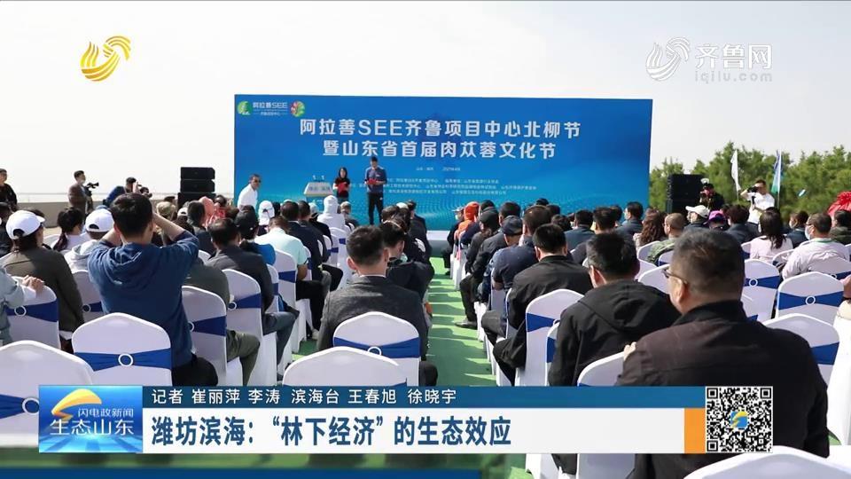 """潍坊滨海:""""林下经济""""的生态效应"""