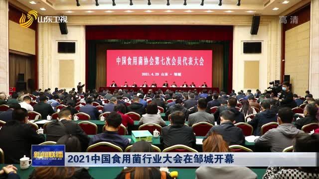 2021年中国食用菌行业大会在邹城开幕