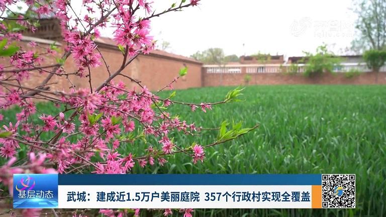武城:建成近1.5万户美丽庭院 357个行政村实现全覆盖