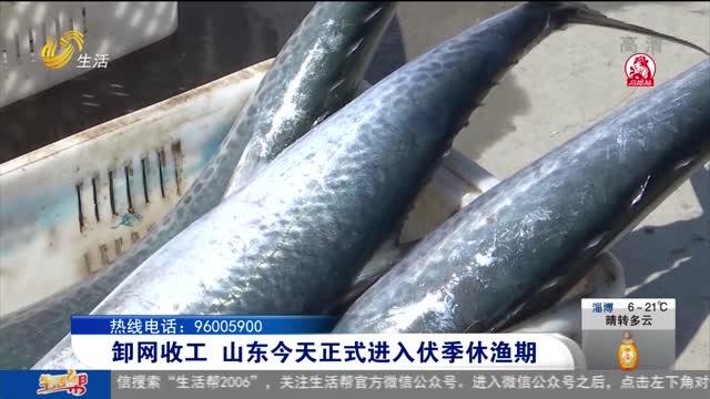 卸网收工 山东今天正式进入伏季休渔期