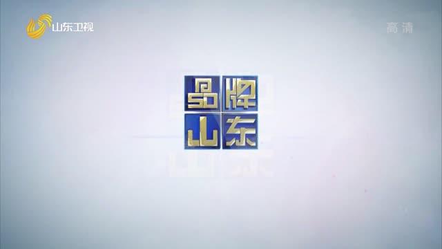 2021年05月02日《品牌山东》完整版
