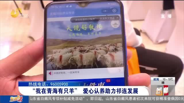 """""""我在青海有只羊""""爱心认养助力祁连发展"""