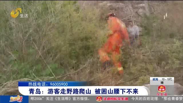 青岛:游客走野路爬山 被困山腰下不来
