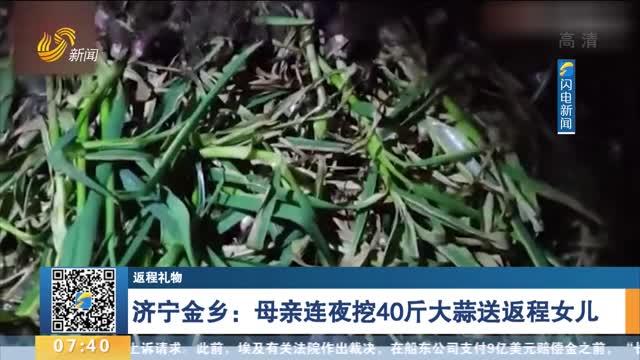 【返程礼物】济宁金乡:母亲连夜挖40斤大蒜送返程女儿:她有俩孩子 省一点是一点
