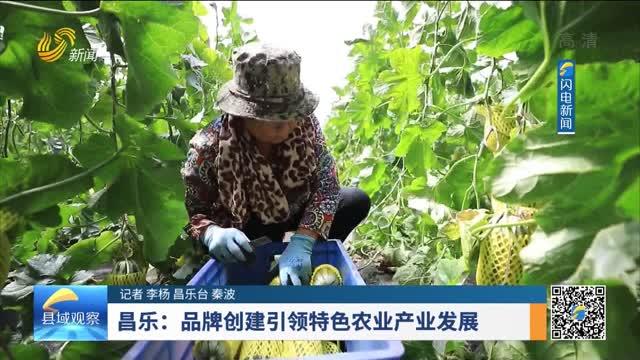 昌乐:品牌创建引领特色农业产业发展