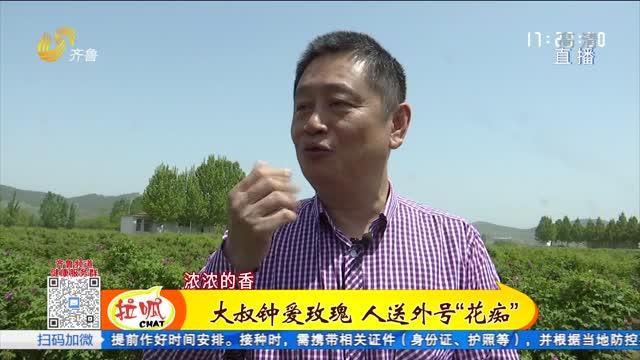 """济南:走近平阴知名""""玫瑰花痴"""""""