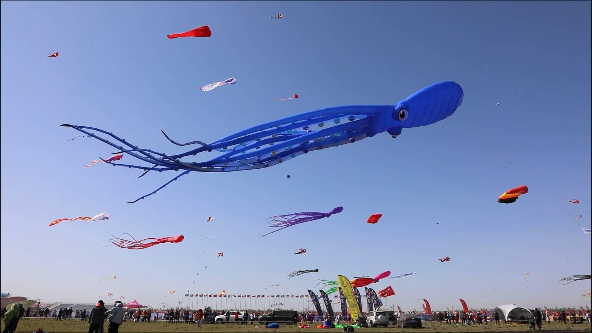 《应急在线》20210502:放风筝有危险  多加小心没错