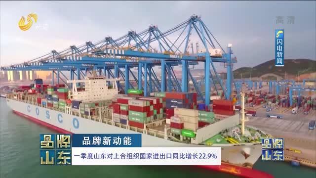 【品牌新动能】一季度山东对上合组织国家进出口同比增长22.9%