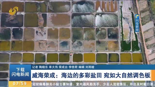 威海榮成:海邊的多彩鹽田 宛如大自然調色板