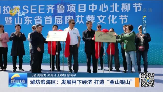 """潍坊滨海区:发展林下经济 打造""""金山银山"""""""