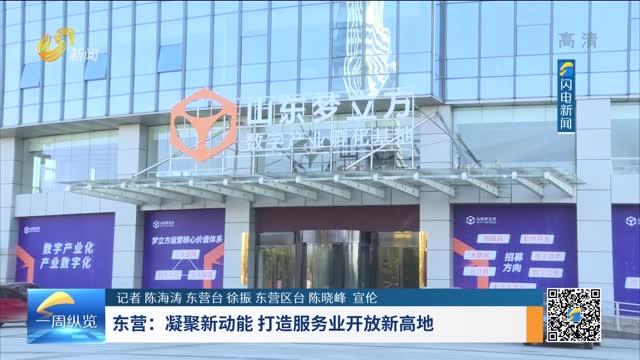 东营:凝聚新动能 打造服务业开放新高地