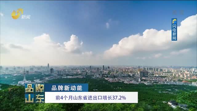 【品牌新动能】前4个月山东省进出口增长37.2%