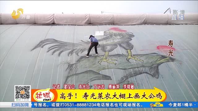 寿光:大棚上来了一只大公鸡 大棚作画纸绘出美好新生活