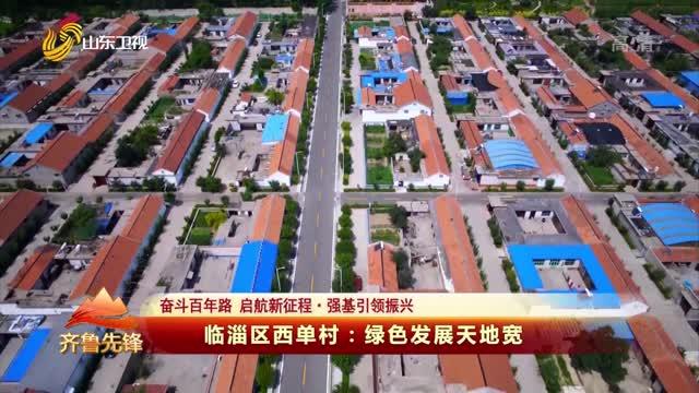 20210517《齐鲁先锋》:临淄区西单村——绿色发展天地宽