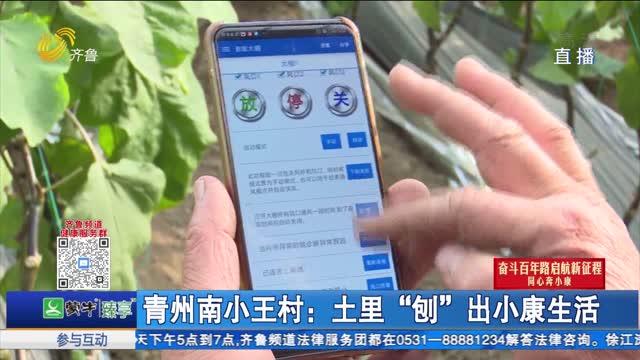 """青州南小王村:土里""""刨""""出小康生活"""