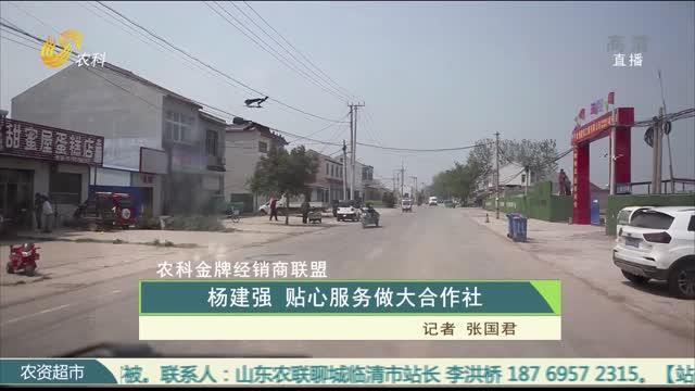 【农科金牌经销商联盟】杨建强 贴心服务做大合作社