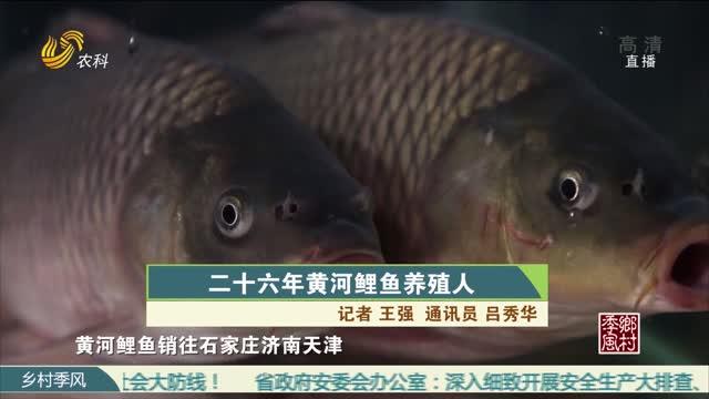 二十六年黄河鲤鱼养殖人