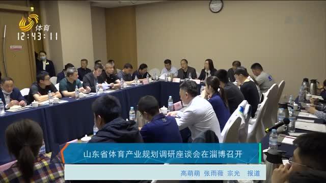 山东省体育产业规划调研座谈会在淄博召开
