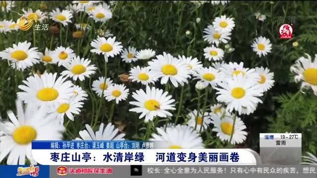 枣庄山亭:水清岸绿 河道变身美丽画卷