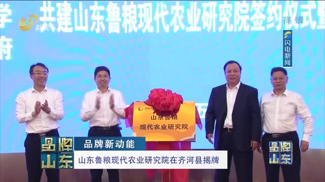【品牌新动能】山东鲁梁现代农业研究院在齐河县揭牌