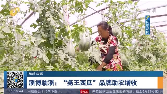 """【同心奔小康】淄博临淄:""""尧王西瓜""""品牌助农增收"""