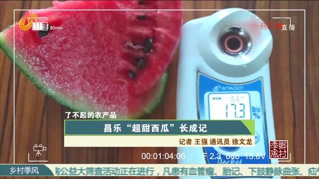 """【农大腐植酸《了不起的农产品》(九)】昌乐""""超甜西瓜""""长成记"""