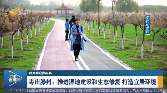 【我为群众办实事】枣庄滕州:推进湿地建设和生态修复 打造宜居环境