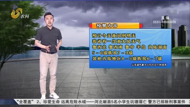 看天气:大风天气 注意防护
