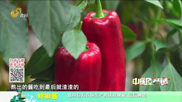 20210525《中国原产递》:鲜椒酱