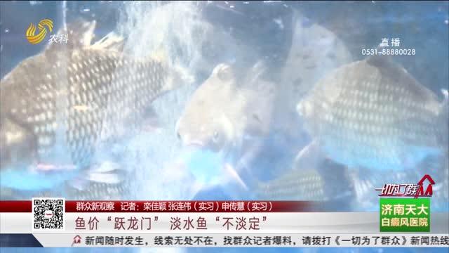 """【群众新观察】鱼价""""跃龙门"""" 淡水鱼""""不淡定"""""""