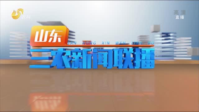 2021年05月26日山东三农新闻联播完整版