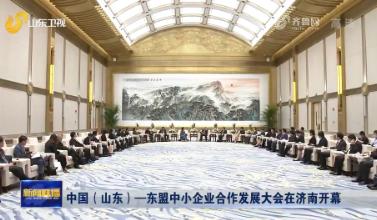 中国(山东)—东盟中小企业合作发展大会在济南开幕
