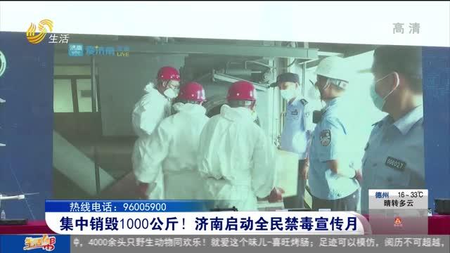 集中销毁1000公斤!济南启动全民禁毒宣传月