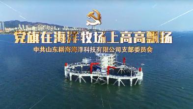 党旗在海洋牧场上高高飘扬——中共山东耕海海洋科技有限公司支部委员会