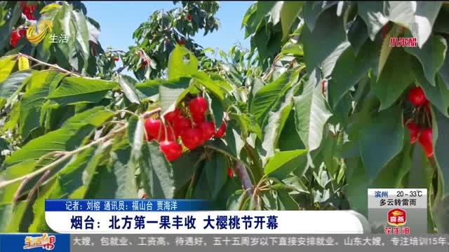 烟台:北方第一果丰收 大樱桃节开幕