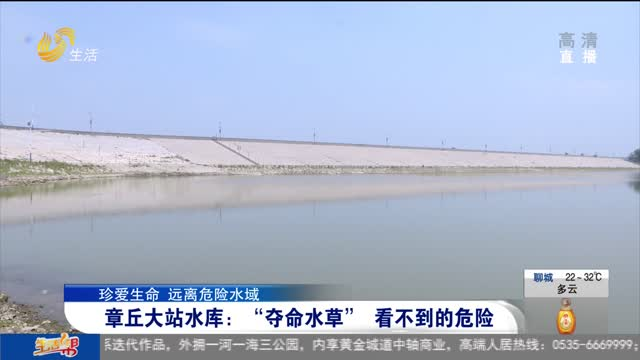"""章丘大站水库:""""夺命水草"""" 看不到的危险"""
