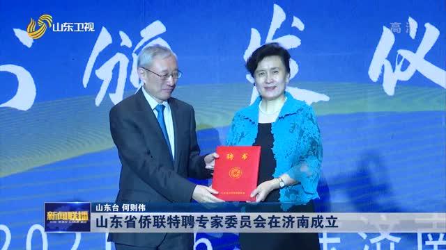 山东省侨联特聘专家委员会在济南成立