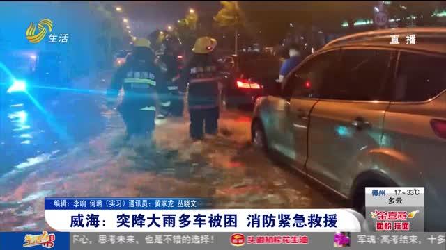威海:突降大雨多车被困 消防紧急救援