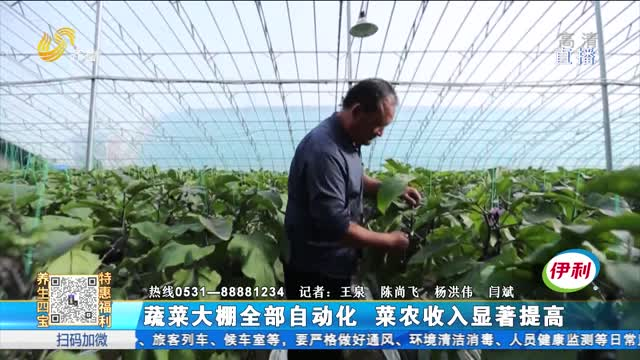 蔬菜大棚全部自动化 菜农收入显著提高
