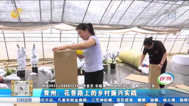 青州:花香路上的乡村振兴实践