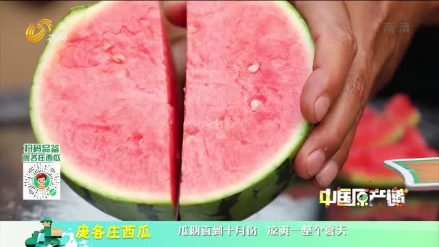 20210624《中國原產遞》:龐各莊西瓜