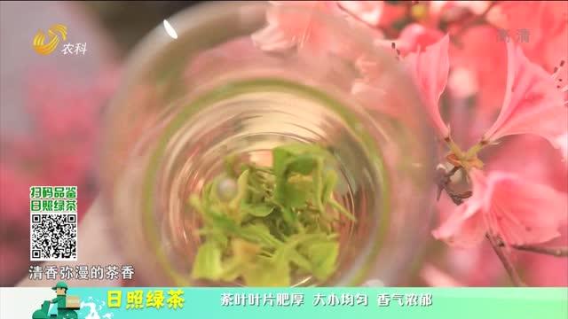 20210625《中國原產遞》:日照綠茶