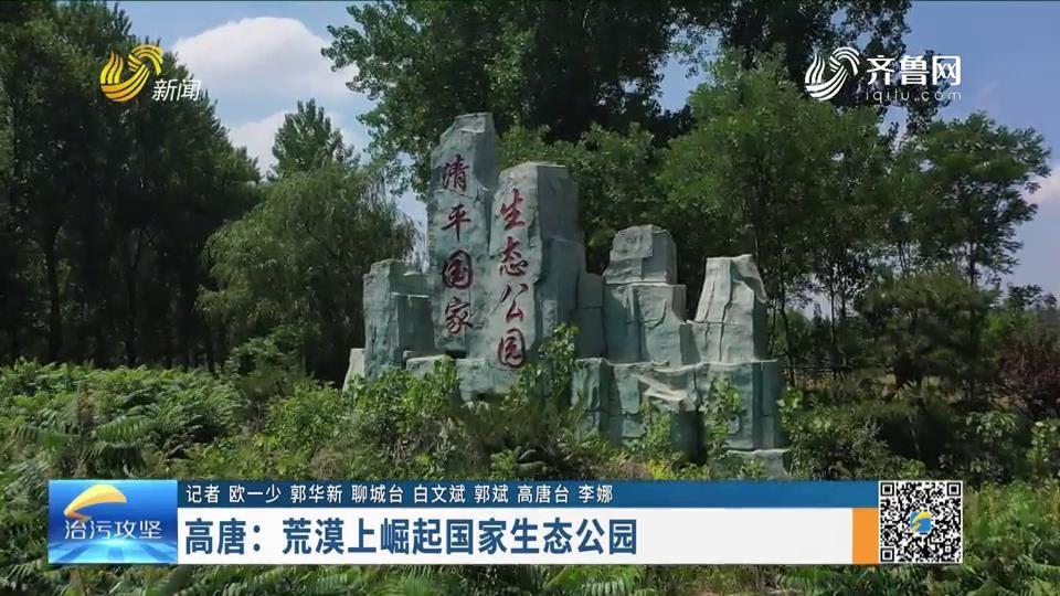 高唐:荒漠上崛起國家生態公園