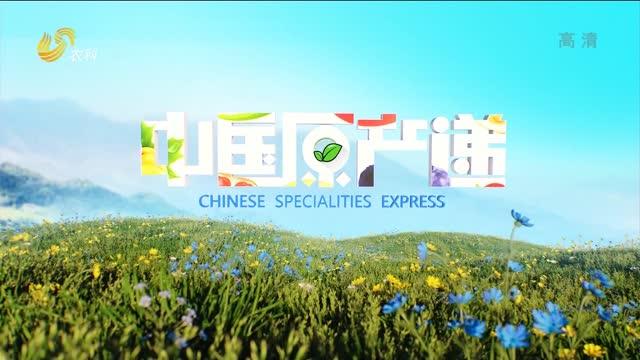 20210708《中國原產遞》:鮮椒醬