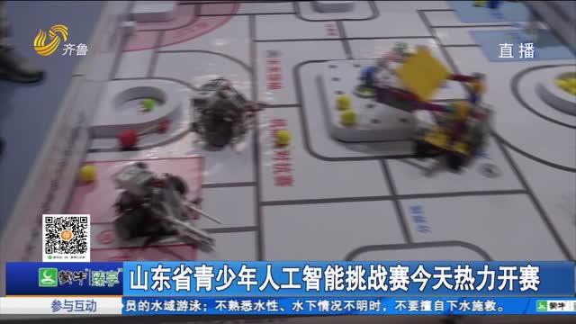 山东省青少年人工智能挑战赛今天热力开赛