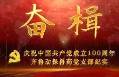奮楫——齊魯制藥集團動保獸藥黨支部慶祝中國共產黨成立100周年